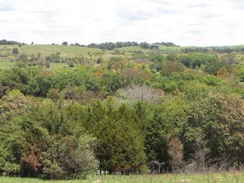 Otter Creek 270 : Sedan : Chautauqua County : Kansas
