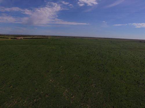 Graham County Irrigated Quarter : Hill City : Graham County : Kansas