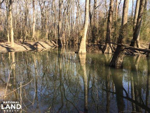 220 Acres Thurman Flats & Cane : McRae : White County : Arkansas