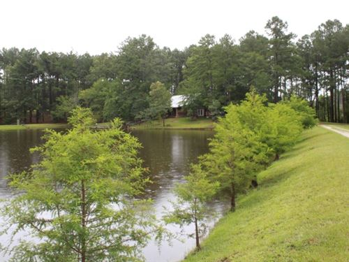 40 Acres With A Home In Jasper Coun : Rose Hill : Jasper County : Mississippi