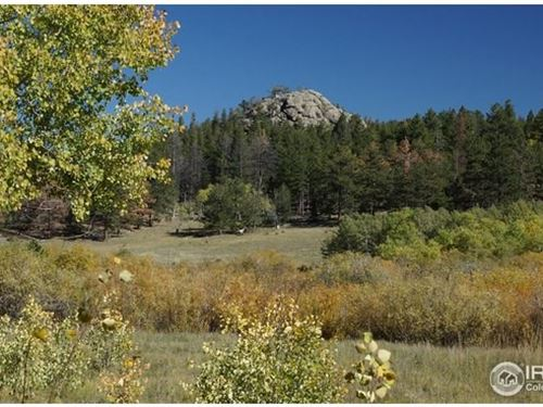 Large Mountain Acreage With Creek : Red Feather Lakes : Larimer County : Colorado