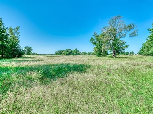 40+/- Acres Fabulous Find : Midway : Madison County : Texas