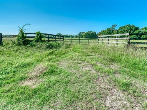 75 +/- Acre Ranch Ready : Midway : Madison County : Texas