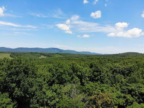 Green Mountain Timberland : Scottsville : Albemarle County : Virginia