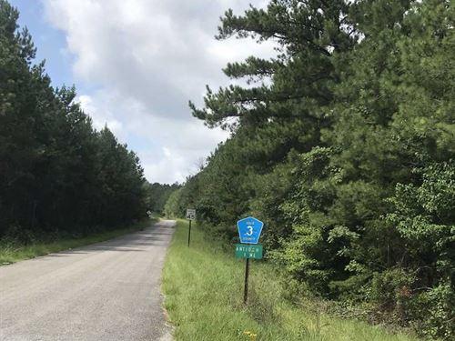 Timber And Recreational Land in Ha : Greensboro : Hale County : Alabama