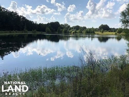 Gore Springs 402 Ac, Hunting & Fish : Gore Springs : Grenada County : Mississippi