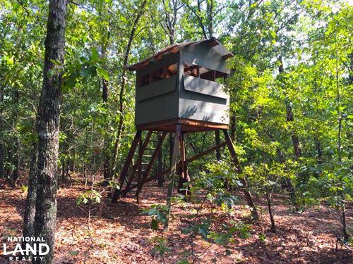 Cassatt Hunting Property : Cassatt : Kershaw County : South Carolina