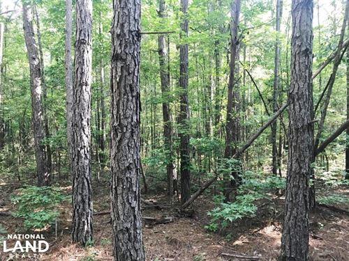 Holly Springs Road Homesite And Hun : Northport : Tuscaloosa County : Alabama