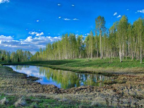 CO Mountain Property Access to : Montrose : Colorado