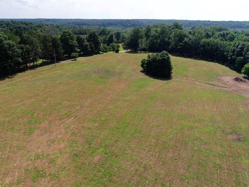 Pastoral 120Ac, Creek, Pond, Trails : Summertown : Lewis County : Tennessee
