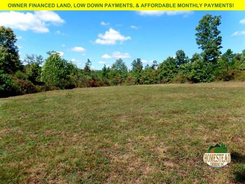 Space To Roam On This Large Parcel : Raymondville : Texas County : Missouri