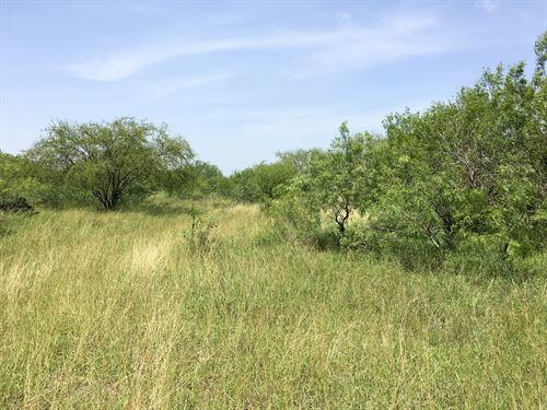 Garza Ranch : La Rosita : Duval County : Texas