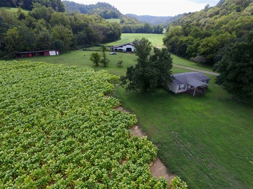 138+Ac Farm, Hm, Barn, Pond, Creeks : Whitleyville : Jackson County : Tennessee
