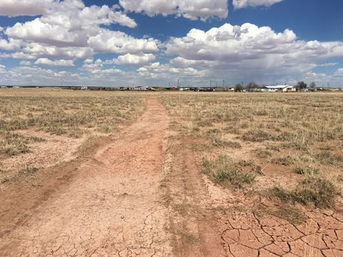 Build Now 10 Acres With Utilities : Holbrook : Navajo County : Arizona