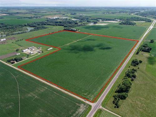 126.54 Acres, More OR Less, Madis : Battle Creek : Madison County : Nebraska