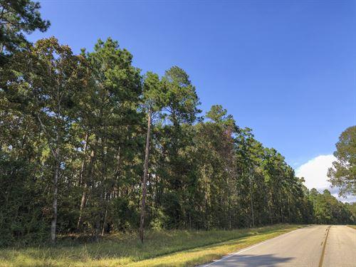 65 Ac Waterwood Estates Tr 14 : Huntsville : San Jacinto County : Texas
