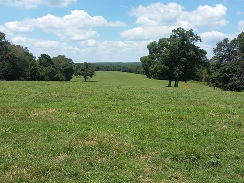 Hunting Land Missouri, 200-Acre : Stover : Morgan County : Missouri