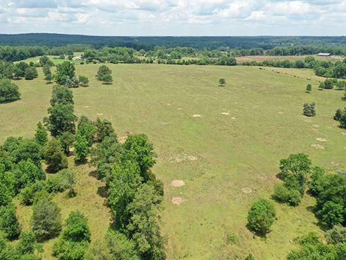 Awesome Pasture Home Site/Mini Farm : Barnesville : Lamar County : Georgia