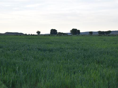 Quarter Circle Ranch : Worland : Washakie County : Wyoming