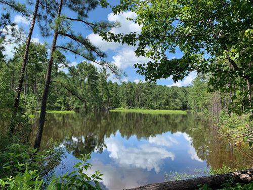 Pine Land, Utilities Small Pond : Chidester : Ouachita County : Arkansas
