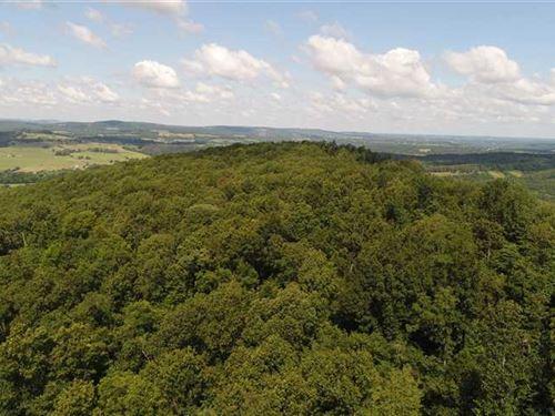 McArthur Mountain 238 : Kingston : Madison County : Arkansas