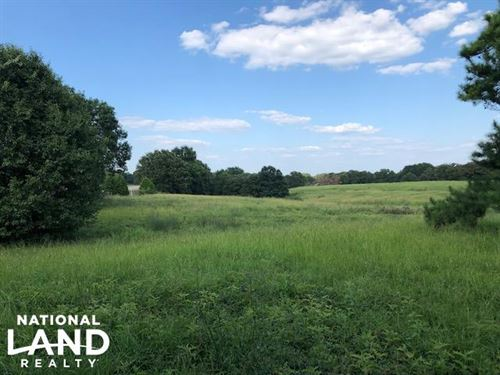 27 Acres Thick Timber, Road Frontag : Malakoff : Henderson County : Texas