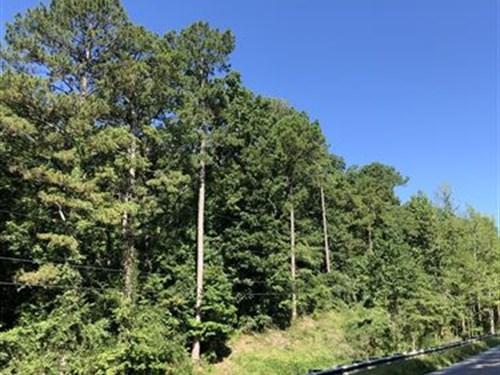 9.5+/- Wooded Acres In Sylacauga : Sylacauga : Talladega County : Alabama