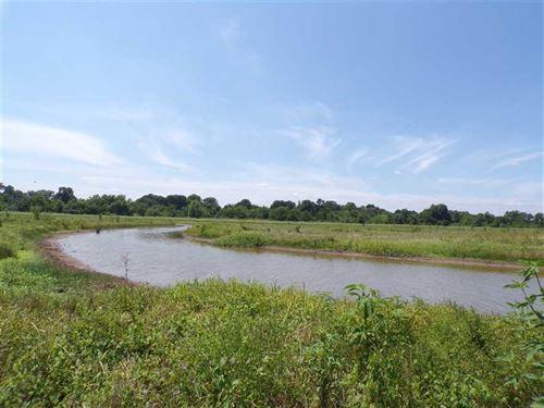 Duck Hunter's Paradise Waterfowl : Idabel : McCurtain County : Oklahoma