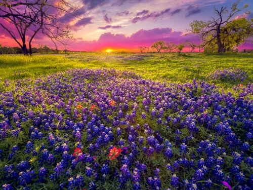 Hill Country Ranches : Burnet : Texas