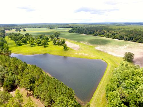 222 +/- Acres Row Crop Farm Cr 4 : Wing : Covington County : Alabama
