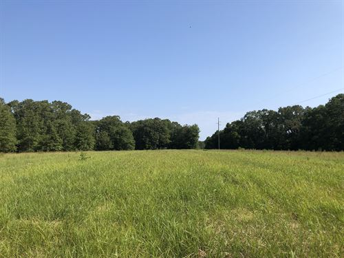Great Timber And Hunting Tract : Abbeville : Henry County : Alabama