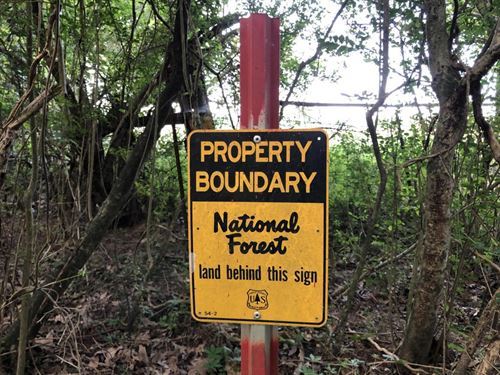 St, Francis National Forest Tract : Marianna : Lee County : Arkansas