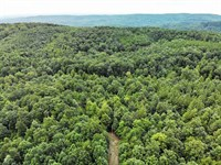 23 Acres in Ellenboro, Rutherfo : Ellenboro : Rutherford County : North Carolina
