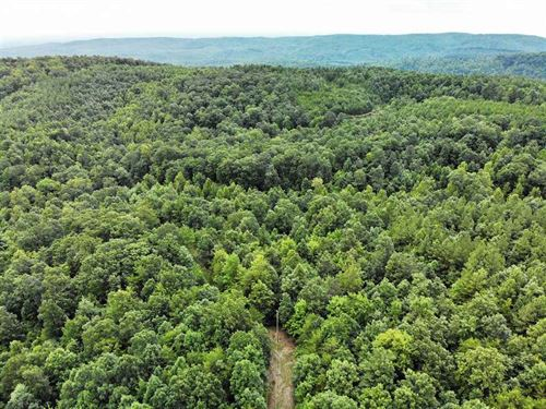 23 Acres in Ellenboro, Rutherfo : Ellenboro : Rutherford County : North Carolina