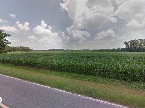 McPhaul Road 10 Acre Homestead : Shannon : Hoke County : North Carolina