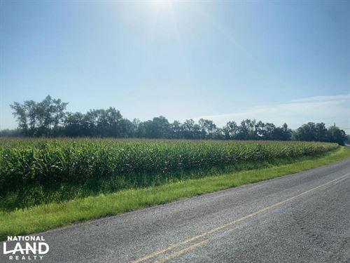 McPhaul Road 5 Acre Homesite : Shannon : Hoke County : North Carolina