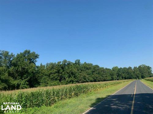17 Ac Homestead : Shannon : Hoke County : North Carolina