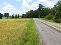 Reduced, 11.83 Acres of Residenti : Amelia Court House : Amelia County : Virginia