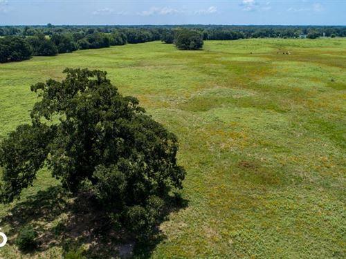 25 Acres Near Lake Fork, Mix of Tim : Emory : Rains County : Texas