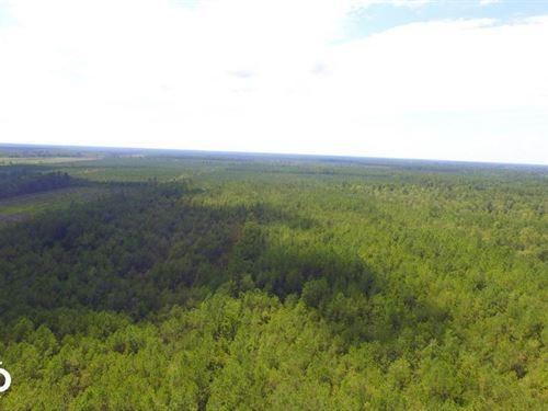 General Howe Hunting And Timber Lan : Delco : Columbus County : North Carolina