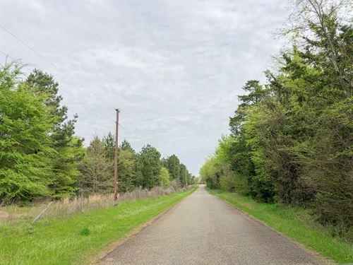 12.7 Acres Cr 4114 Tract 1011 : Hughes Springs : Morris County : Texas