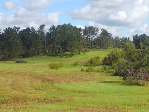 Great Oaks : Cottondale : Jackson County : Florida