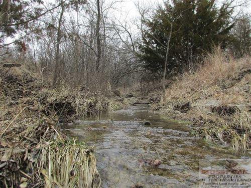 Timber Creek East 80 : Burden : Cowley County : Kansas