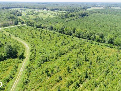 Pitt County Home Tract : Grifton : Pitt County : North Carolina
