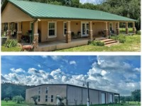Beautiful Ranch Home, 43 Acres : Bell : Gilchrist County : Florida