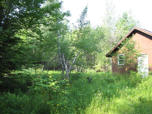 Riverfront Land For Sale in Maine : Amherst : Washington County : Maine