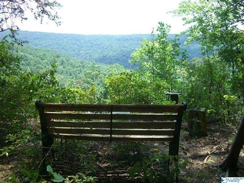 Awesome Hunting Land With Nice Home : Fackler : Jackson County : Alabama