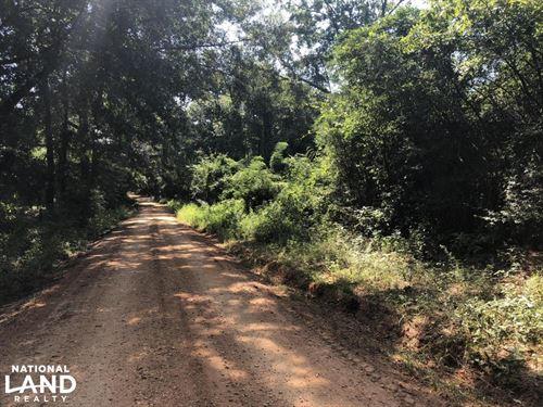 Castleberry Homesite : Castleberry : Conecuh County : Alabama