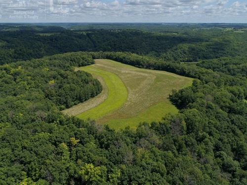 Hunting Land in Vernon County, WI : Readstown : Vernon County : Wisconsin