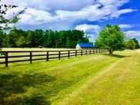 Horse Farm / Investment Beaufort Co : Blounts Creek : Beaufort County : North Carolina